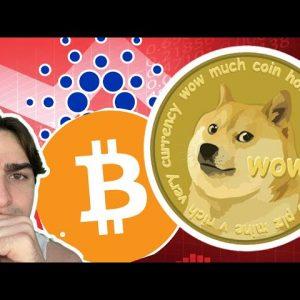 Weekend Crypto! [DOGE, ADA, BTC, ETC]